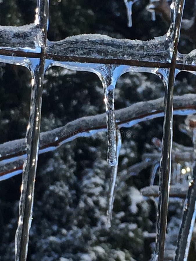 Bellezza congelata immagini stock