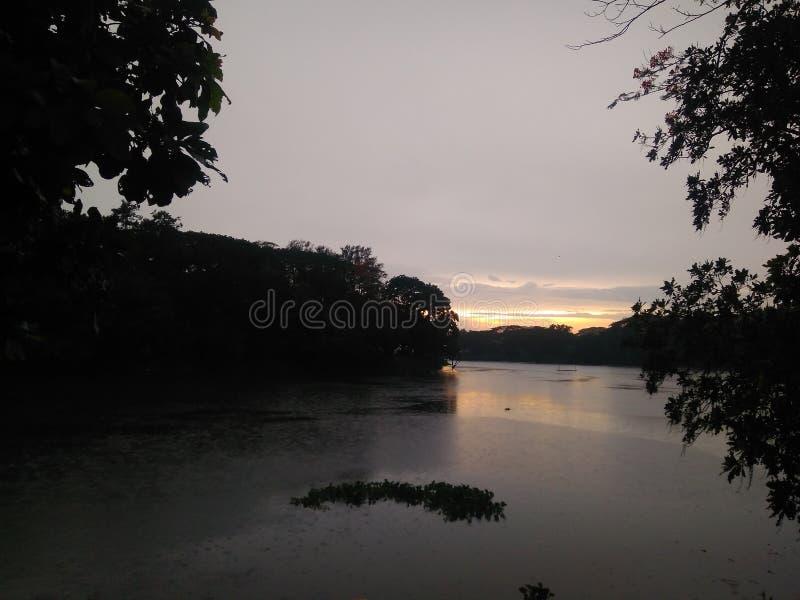 Bellezza del Bangladesh fotografia stock