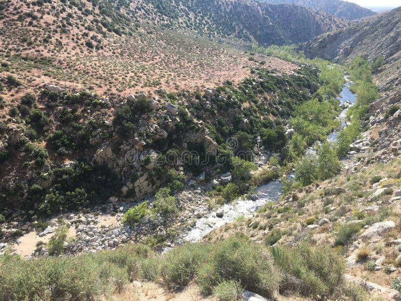 Bellezza del Mojave immagini stock