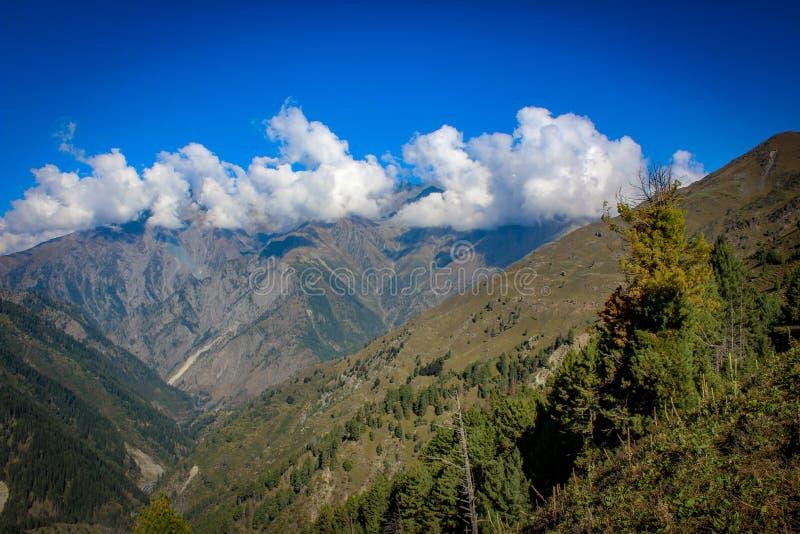 Bellezza della natura di Himachal Pradesh, India immagine stock