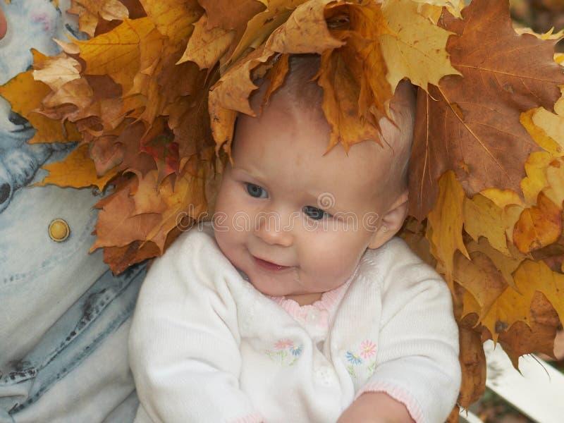 Bellezza di autunno immagini stock