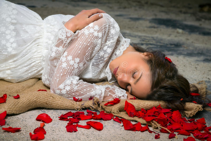 Bellezza e petali di Rosa immagine stock libera da diritti