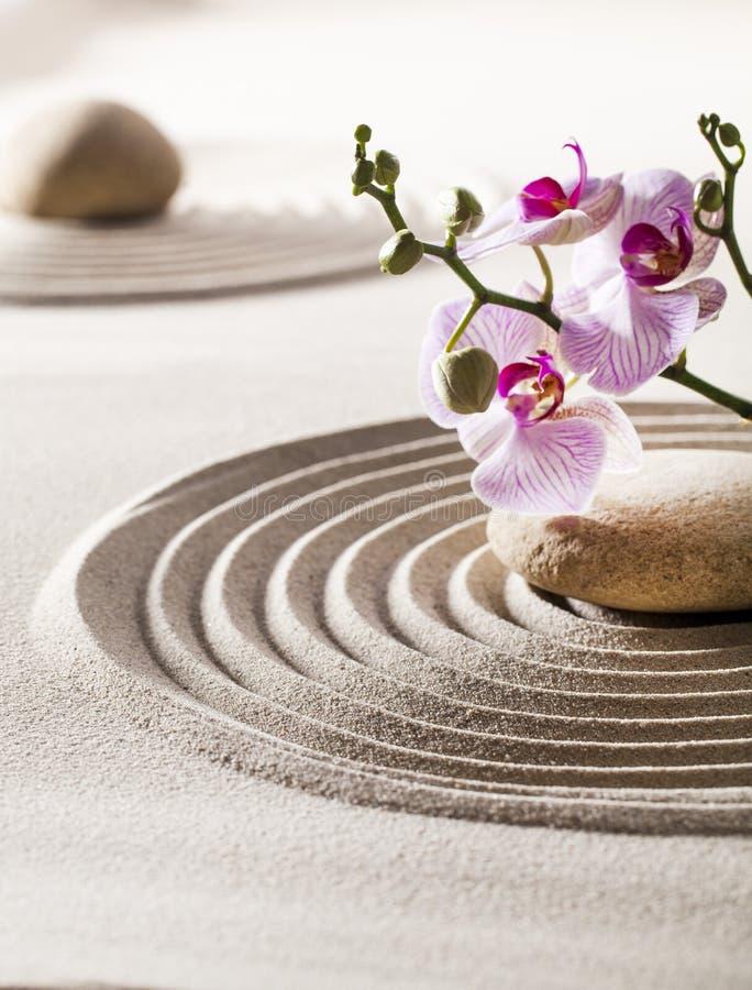 Bellezza interna con i fiori di zen fotografie stock libere da diritti