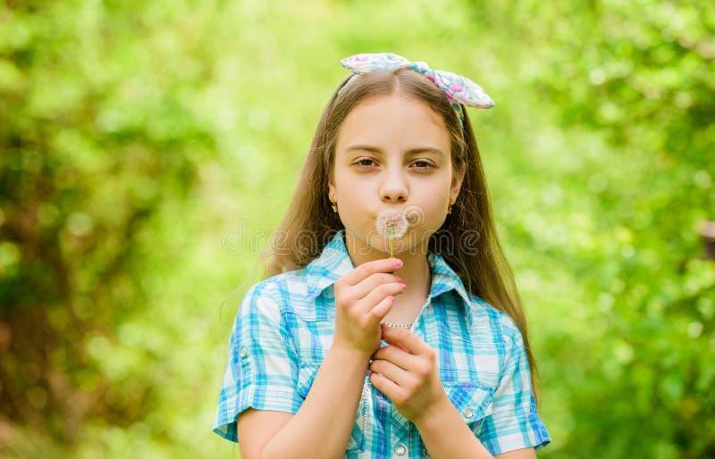 Bellezza naturale Felicit? di infanzia blowball felice della tenuta del bambino bambina e con il fiore del taraxacum Vacanza di e immagine stock