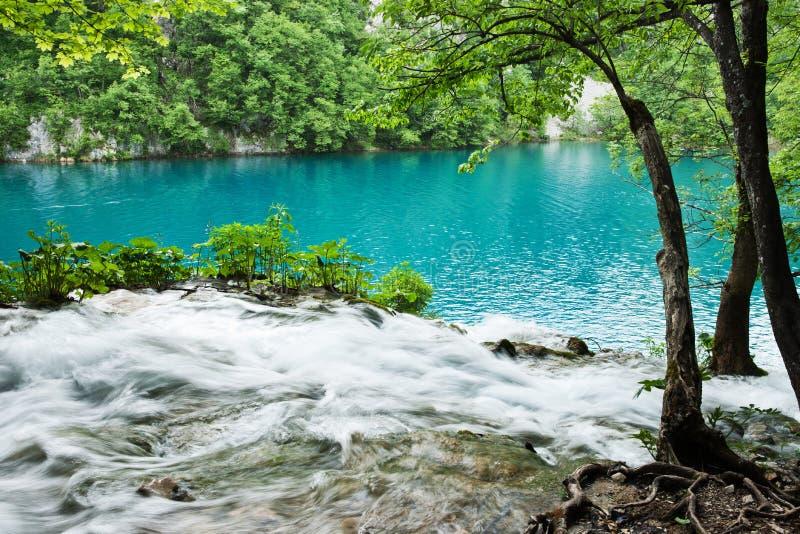 Bellezza naturale, laghi Plitvice, Croatia fotografia stock libera da diritti