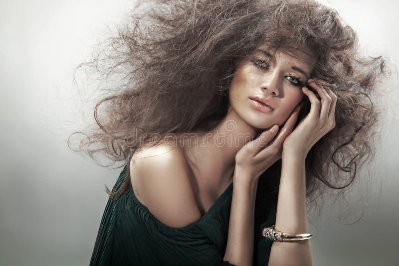 Bellezza perfetta del brunette immagine stock