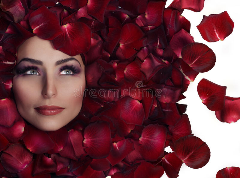 Bellezza in petali di Rosa fotografia stock