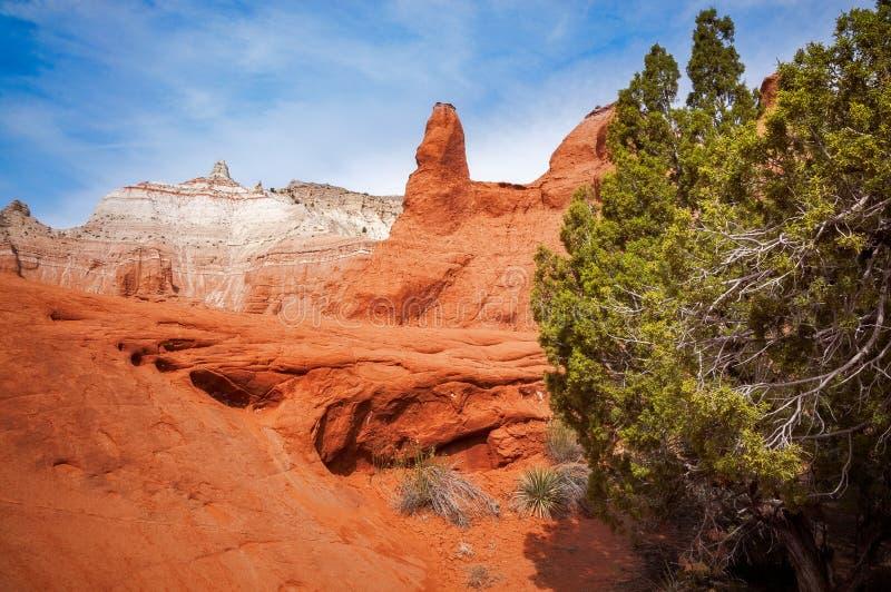Bellezza unica del deserto al parco di stato del bacino di Kodachrome fotografia stock