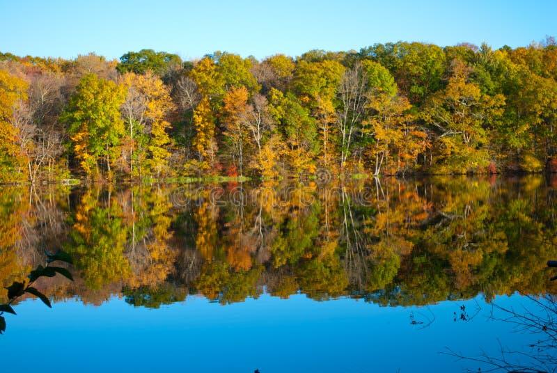 Bellissima affluenza autunnale in New England USA a Risley Park Vernon Connecticut immagine stock libera da diritti