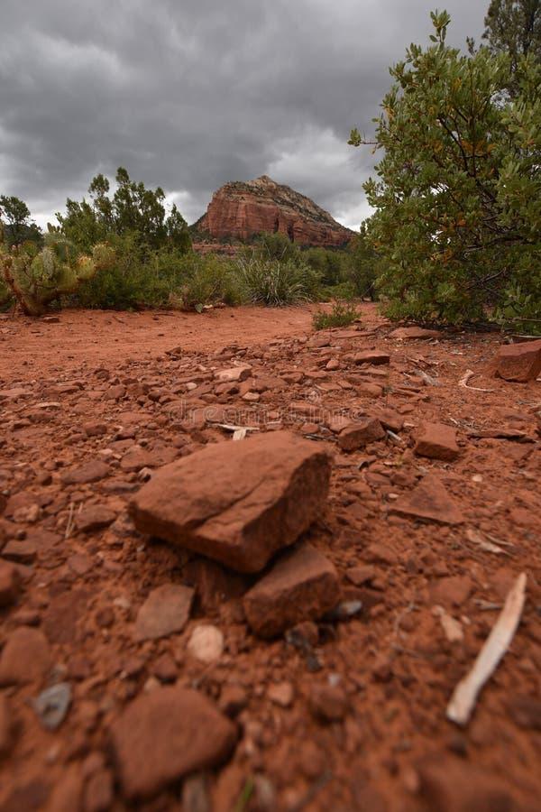Bellissima natura a Sedona, città dell'Arizona Turismo negli Stati Uniti d'America immagine stock libera da diritti