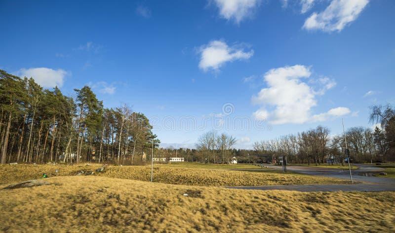 Bellissima vista paesaggistica con campi, alberi forestali e cielo azzurro con nuvole bianche Sfondi a molla immagine stock libera da diritti