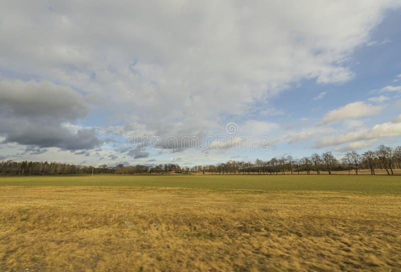 Bellissima vista paesaggistica con campi, alberi forestali e cielo azzurro con nuvole bianche Sfondi a molla immagine stock