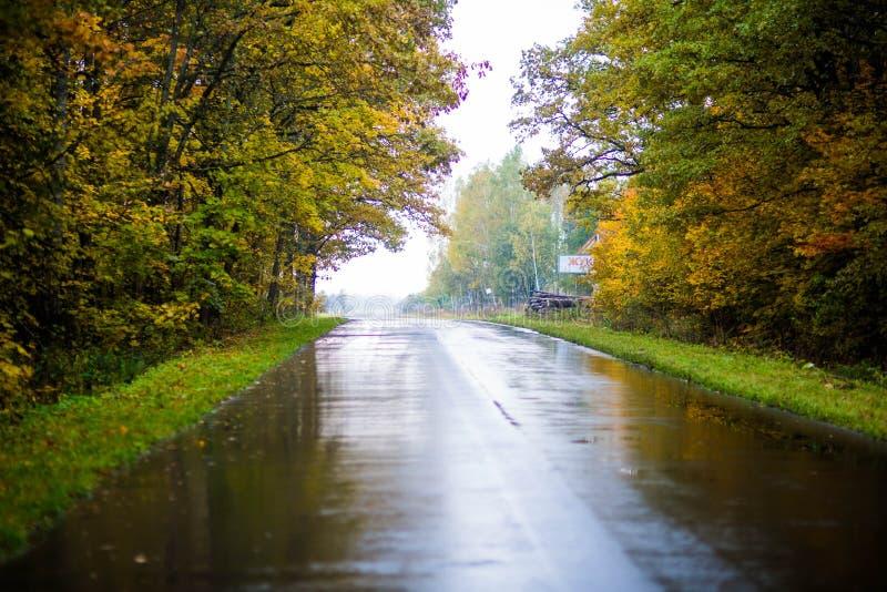 bellissimo autunno luminoso fotografia stock