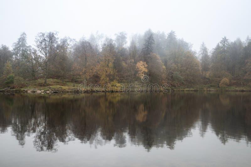 Bellissimo moderno paesaggio autunnale di bosco e lago con nebbia alla nebbia durante la mattina presto fotografie stock