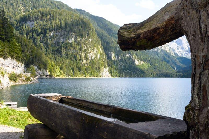 Bellissimo paesaggio austriaco Alpi europee, foresta di conifere e lago in una giornata calda di sole Regione di Gosauzen, Austri immagine stock libera da diritti
