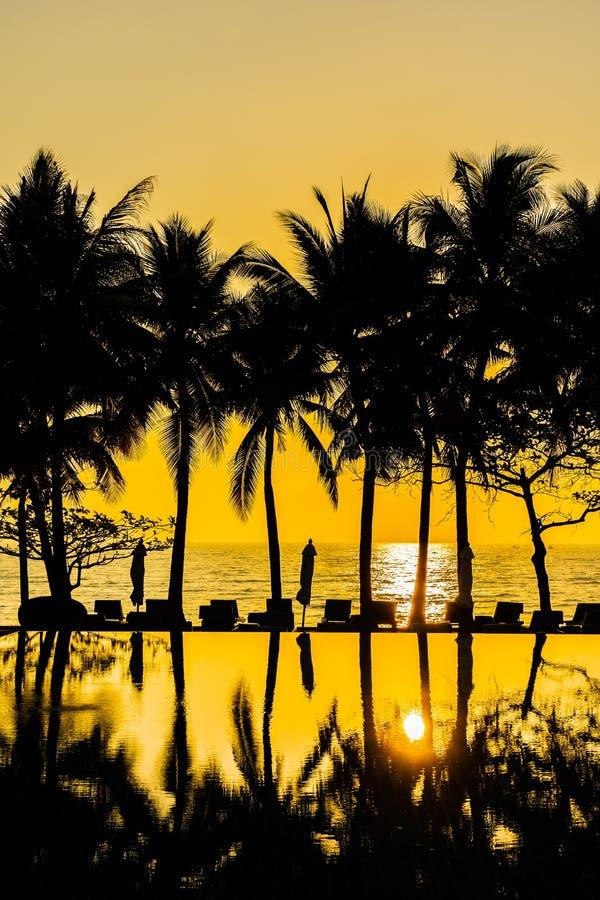 Bello albero del cocco della siluetta sul cielo intorno alla piscina in spiaggia neary dell'oceano del mare della localit? di sog fotografia stock