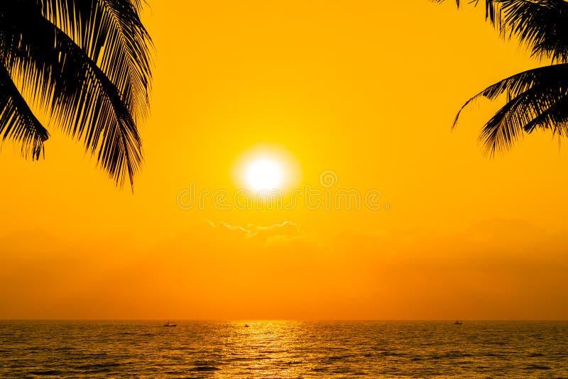 Bello albero del cocco della siluetta sulla spiaggia neary dell'oceano del mare del cielo a tempo di alba o di tramonto immagini stock libere da diritti