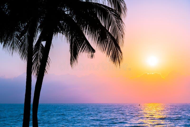 Bello albero del cocco della siluetta sulla spiaggia neary dell'oceano del mare del cielo a tempo di alba o di tramonto fotografia stock libera da diritti