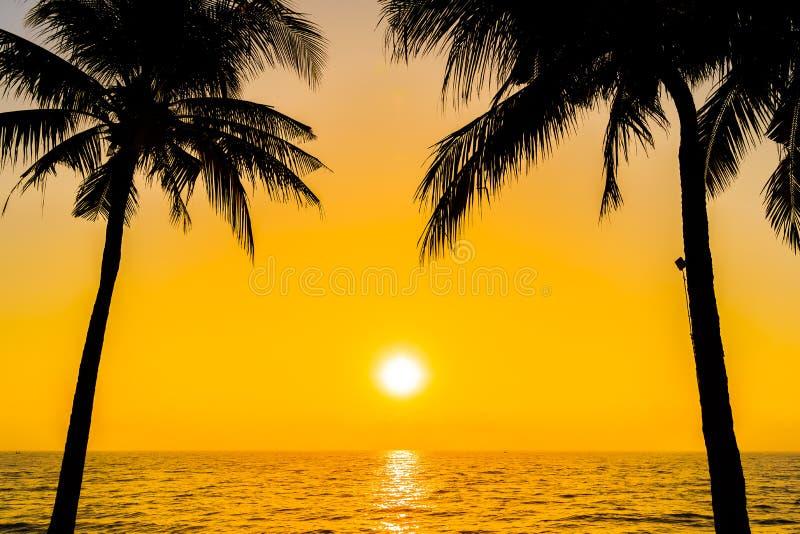 Bello albero del cocco della siluetta sulla spiaggia neary dell'oceano del mare del cielo a tempo di alba o di tramonto fotografia stock
