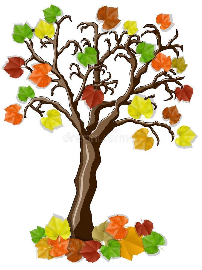 Bello albero di autunno con le foglie multicolori illustrazione di stock