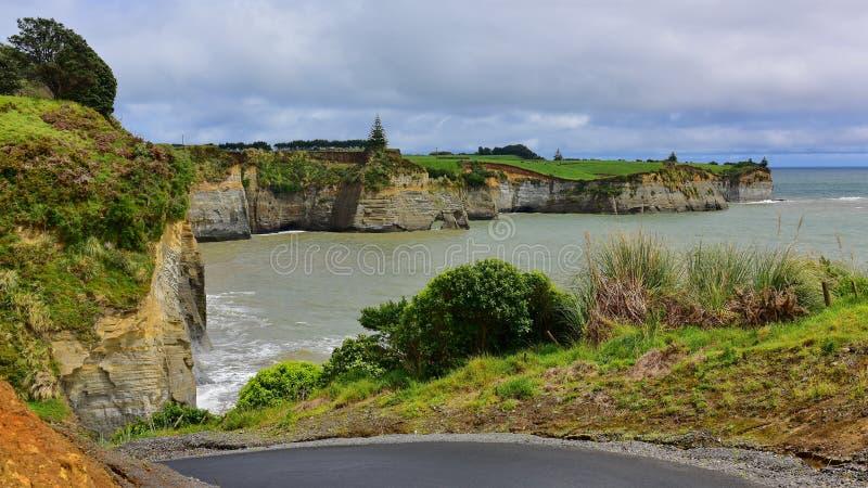 Bello allungamento delle scogliere bianche lungo l'ansa del nord di Taranaki in Nuova Zelanda fotografia stock libera da diritti