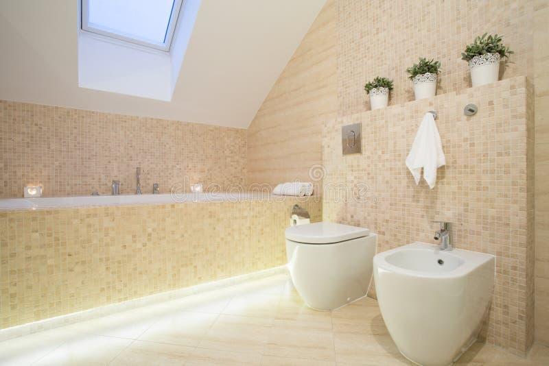 Bello Bagno Nel Colore Beige Fotografia Stock - Immagine di casa ...