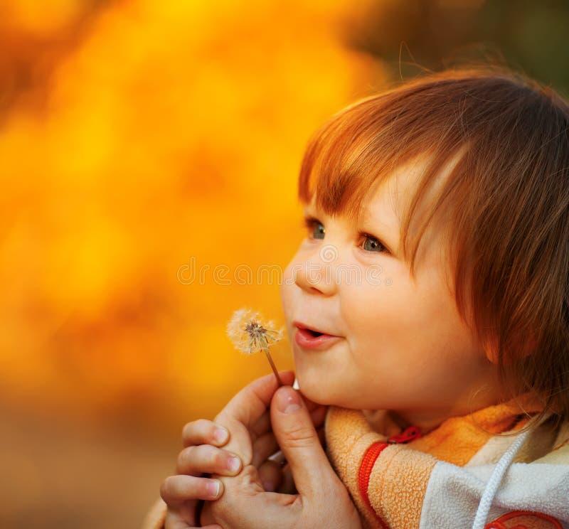 Bello bambino che soffia via il fiore del dente di leone fotografia stock libera da diritti