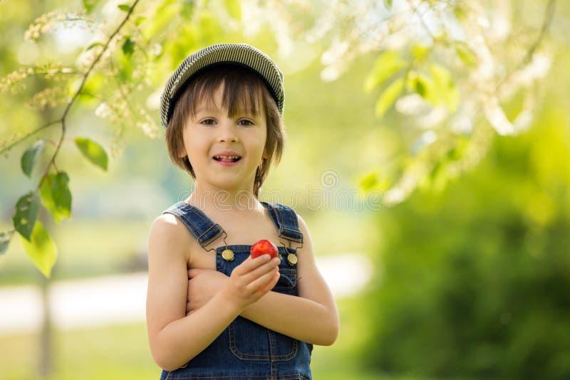 Bello bambino sveglio, ragazzo, mangiando le fragole e nel parco immagine stock libera da diritti