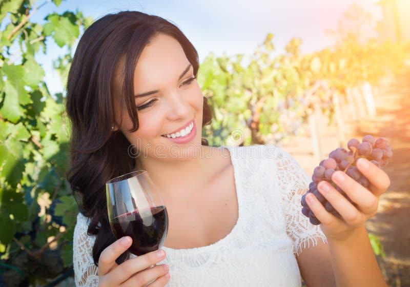 Bello bicchiere di vino godente castana che seleziona l'uva nella vigna fotografia stock libera da diritti
