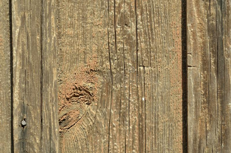 Bello bordo di legno marrone senza pittura, struttura immagine stock