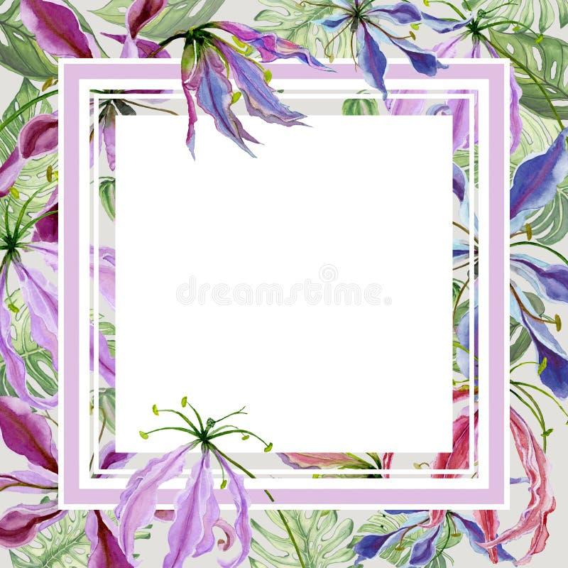 Bello bordo floreale Fiori del giglio di Gloriosa con le foglie esotiche Pastello colorato Struttura quadrata con spazio bianco p illustrazione vettoriale