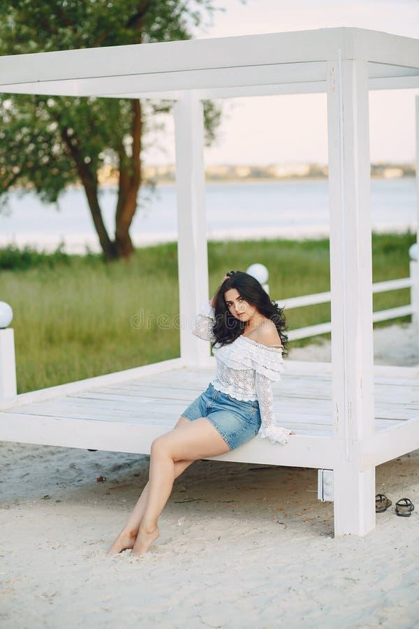 Download Bello brunette fotografia stock. Immagine di lifestyle - 117976112