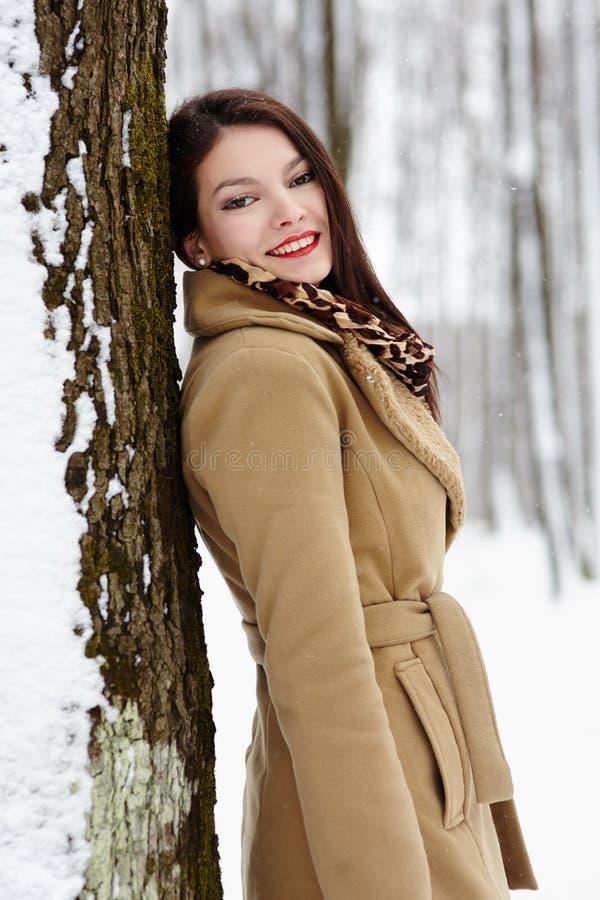 Bello castana appoggiandosi un tronco di albero nell'inverno fotografie stock libere da diritti