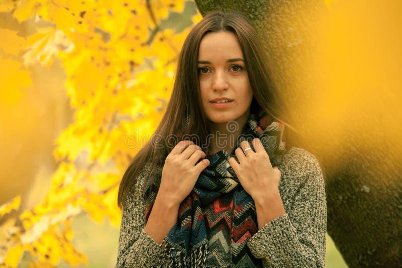 Bello castana in sciarpa nel giorno di autunno Tiro tramite le foglie gialle Donna sola che gode del paesaggio della natura in au immagini stock libere da diritti