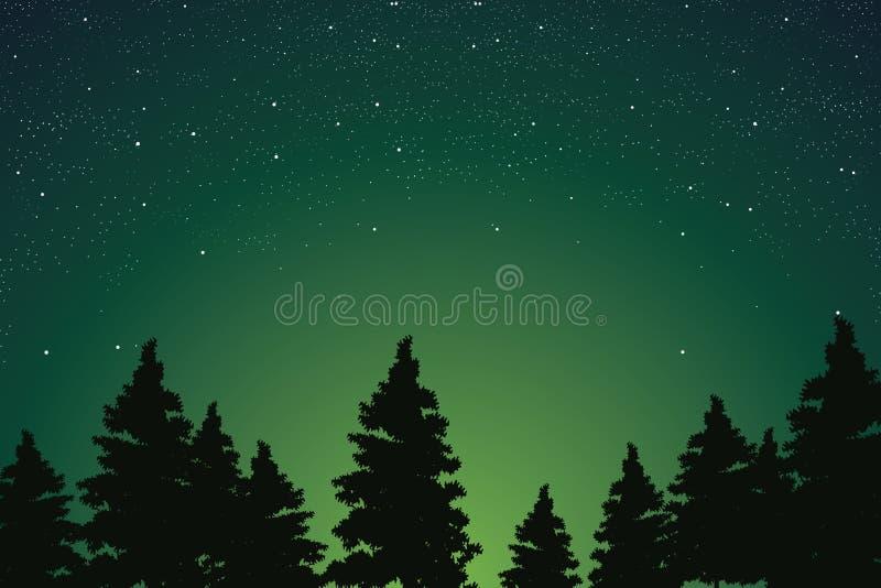 Bello cielo notturno stellato sopra l'abetaia, illustratore di vettore royalty illustrazione gratis