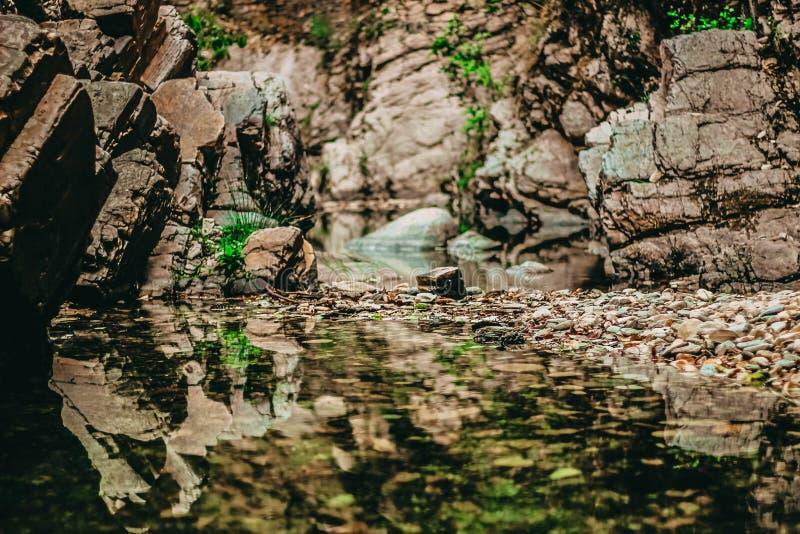 Bello colpo delle rocce e dell'erba fotografia stock