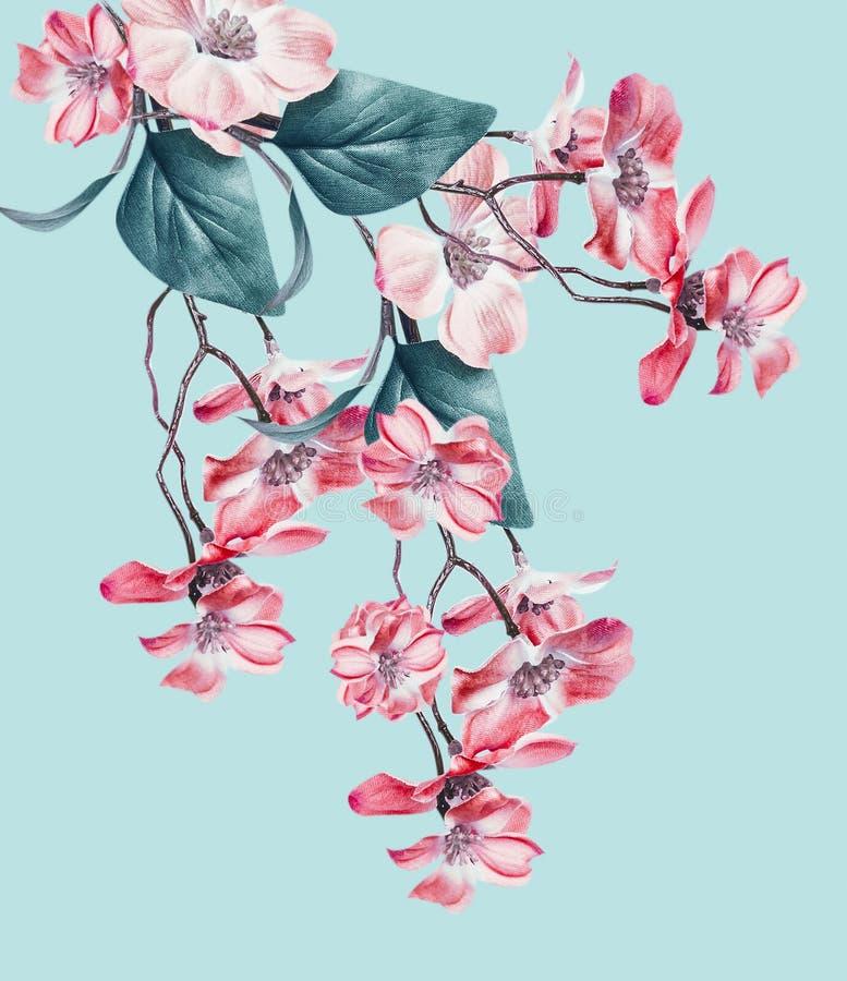 Bello comporre floreale con i fiori di corallo sboccia ramo d'attaccatura su turchese leggero Disposizione floreale immagini stock