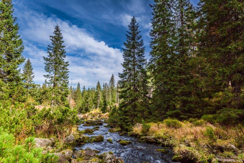 Bello crepuscolo allo stagno nelle montagne di Tatra in autunno immagini stock