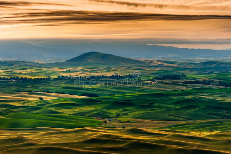 Bello e Palouse drammatico, Washington, alba di estate fotografia stock libera da diritti