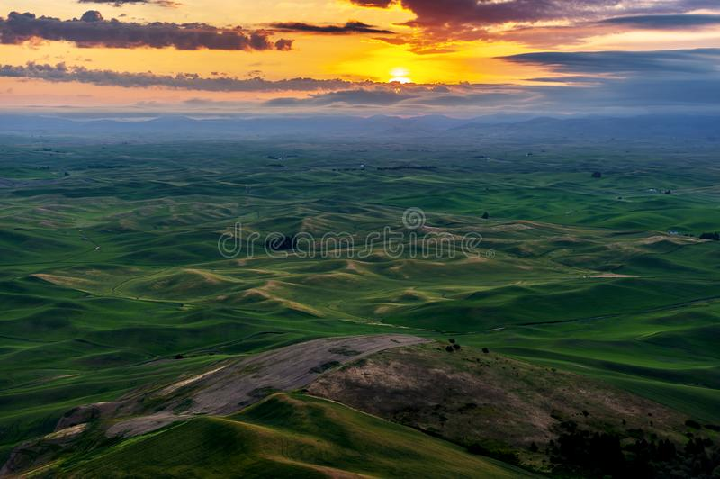 Bello e Palouse drammatico, Washington, alba di estate immagine stock libera da diritti