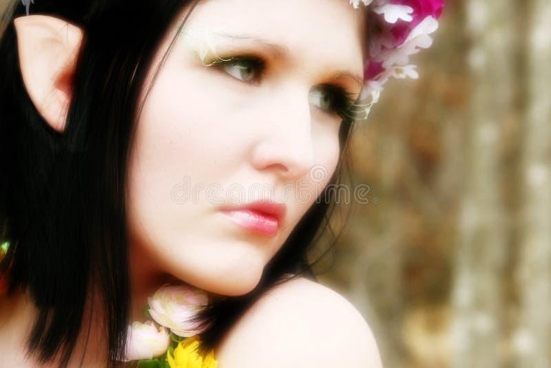 Bello elfo di legno o del Fairy immagine stock