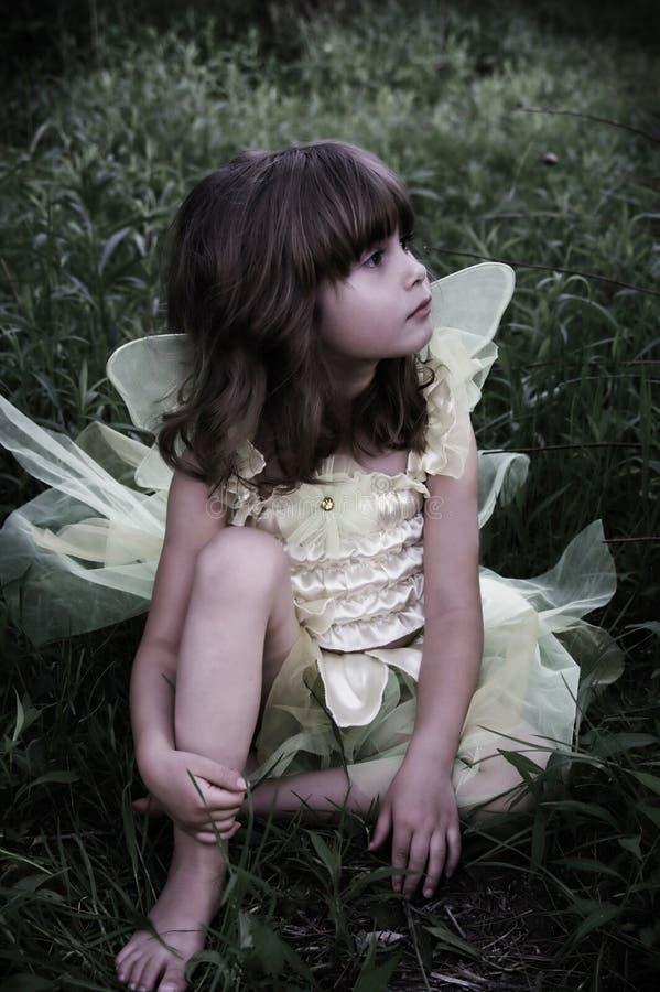 Bello fairy immagine stock libera da diritti