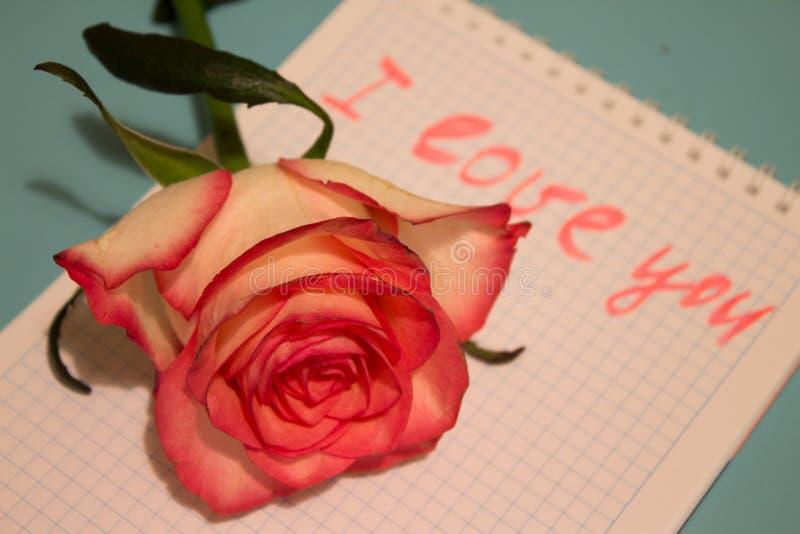 Bello fiore rosa con la dichiarazione di amore in taccuino fotografia stock libera da diritti