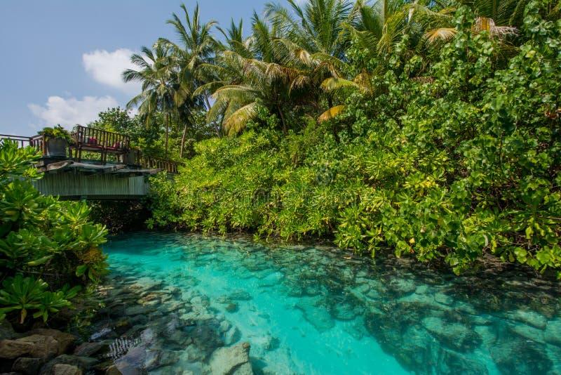 Bello fiume artificiale con il ponte di legno in mezzo alle isole tropicali fotografie stock