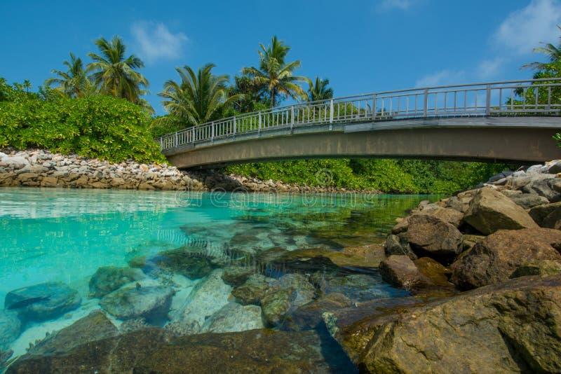 Bello fiume artificiale con il ponte in mezzo alle isole tropicali fotografie stock libere da diritti