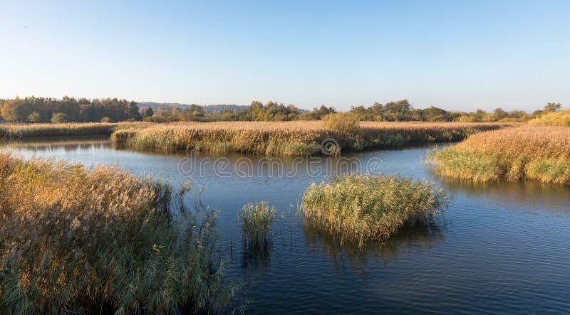 Bello fiume Gudenaa a Randers, Danimarca Acqua calma, cielo blu immagini stock