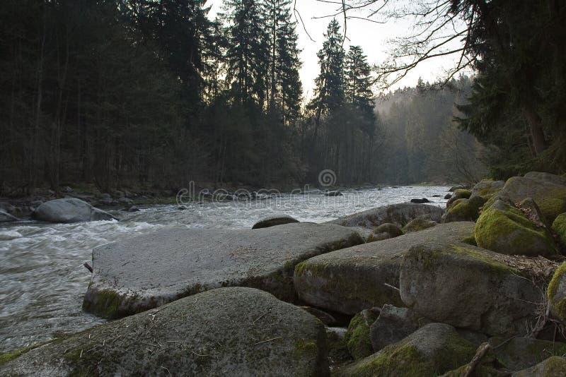 Bello fiume in montagna ad alba fotografia stock libera da diritti