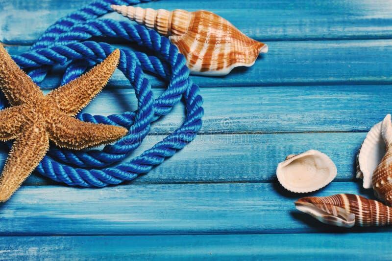 bello fondo del mare di estate Bordi di legno blu, corda decorativa blu, conchiglie fotografia stock libera da diritti