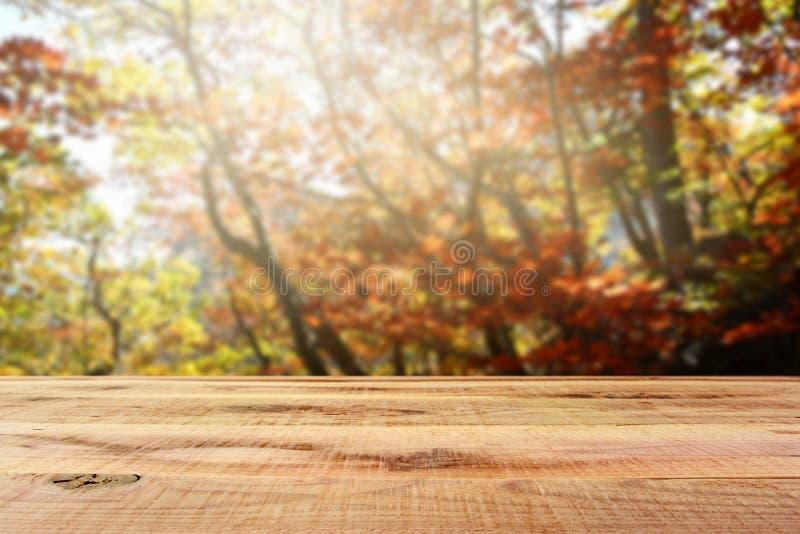 Bello fondo di legno della foresta di autunno della sfuocatura e dello scrittorio fotografia stock libera da diritti