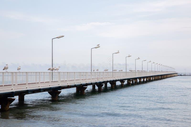 Bello fondo di un pilastro con i gabbiani, il mare calmo ed i cieli blu immagine stock